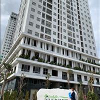 Căn hộ quy nhơn-căn hộ giá rẻ-căn hộ đang bàn giao-căn hộ Ecolife Riverside
