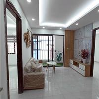 Bán chung cư mini Bạch Mai - Hồng Mai 30 - 63m2 ô tô đỗ cửa, nhận nhà ngay, có sân vườn penthouse