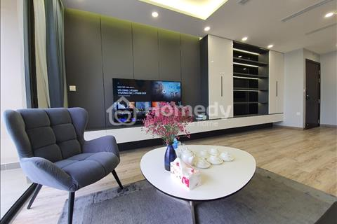 Cần cho thuê căn hộ 3PN Vinhomes D' capitale đầy đủ nội thất giá hỗ trợ mùa covid 17tr / tháng.