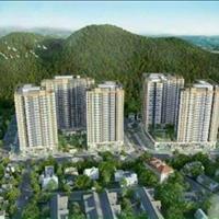 Căn hộ siêu VIP vị trí trung tâm TP Quy Nhơn, sở hữu lâu dài, giá chỉ 1,3 tỷ/căn