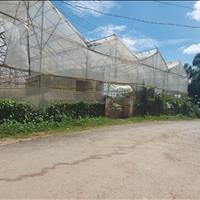 Nhanh tay sở hữu lô đất mặt tiền đường Măng Line, Phường 7, Đà Lạt