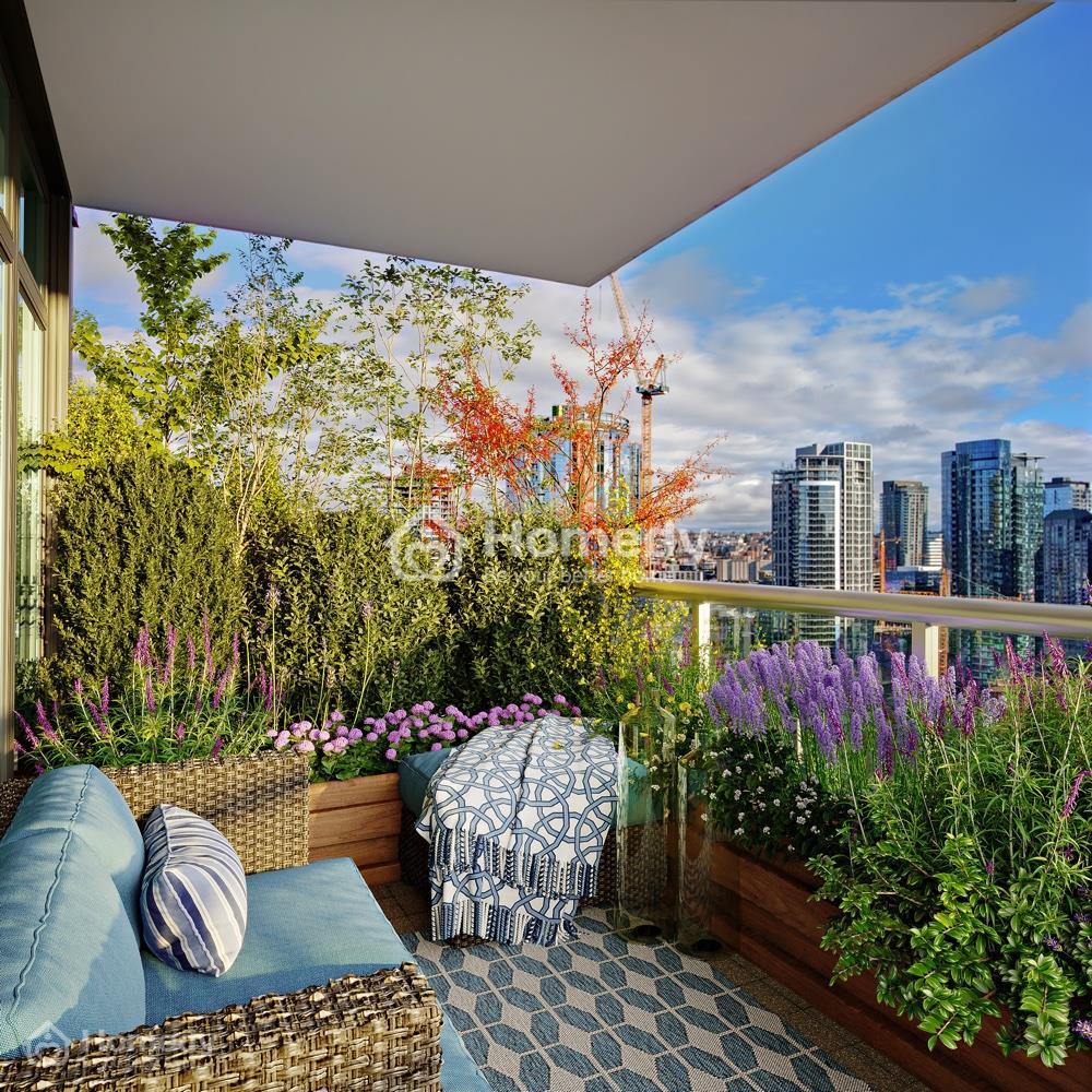 Cây vạn niên thanh phù hợp trồng ở ban công chung cư