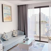 Chủ nhà Hàn về nước ký gửi căn hộ 2PN 2WC dự án Vinhomes D' Capitale đầy đủ nội thất giá mùa Covid