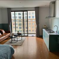 Chính chủ cần cho thuê căn hộ Studio 38m2 Vinhomes D'capitale giá 9,5tr/tháng đầy đủ nội thất