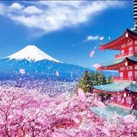 Chìa khóa vàng mở ngàn ưu đãi - chính sách chiết khấu hấp dẫn dự án Takashi Ocean Suite Kỳ Co