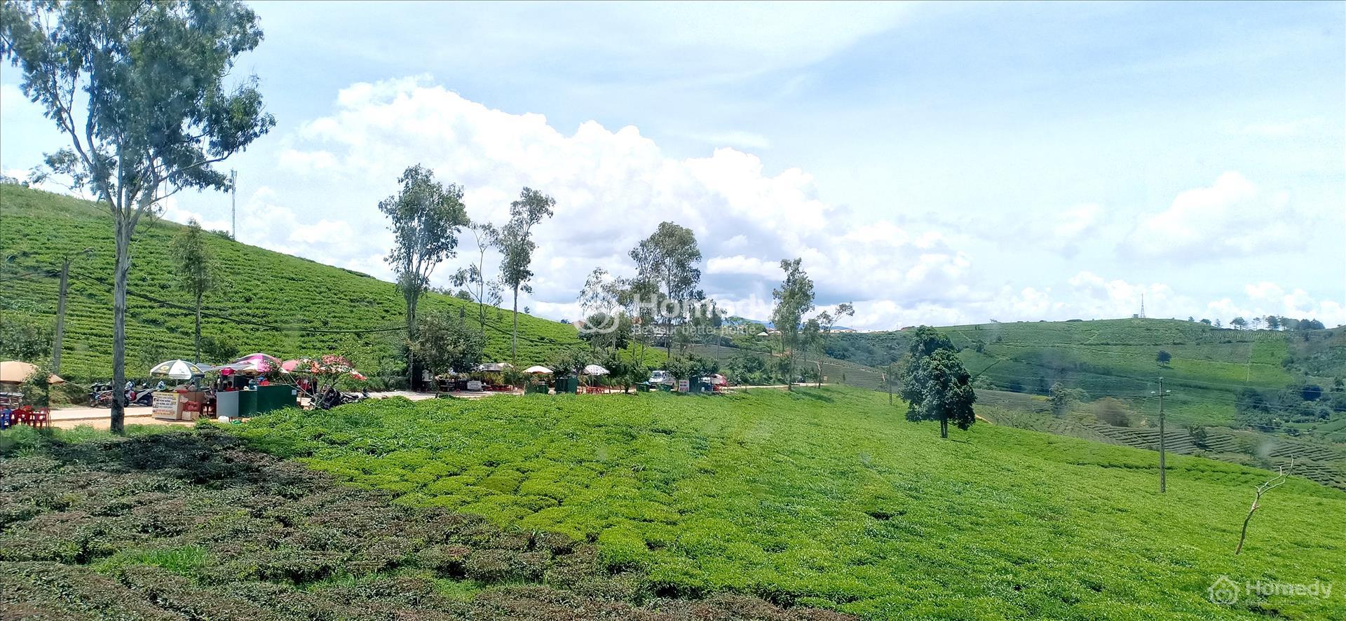 Giá đất ở nông thôn Bảo Lộc