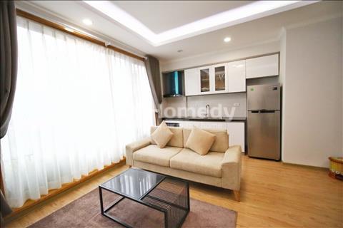 Cho thuê căn hộ dịch vụ cao cấp Himeji 50m2 Quận Ba Đình đầy đủ nội thất