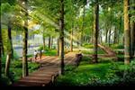 Công viên rợp bóng cây xanh mang lại bầu không khí trong lành, tạo tầm nhìn rộng mở về các hướng.