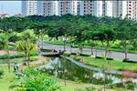 Diện tích cây cối rộng lớn khiến chung cư Thanh Hà Cienco 5 như đắm chìm trong một khoảng không gian xanh ngắt.