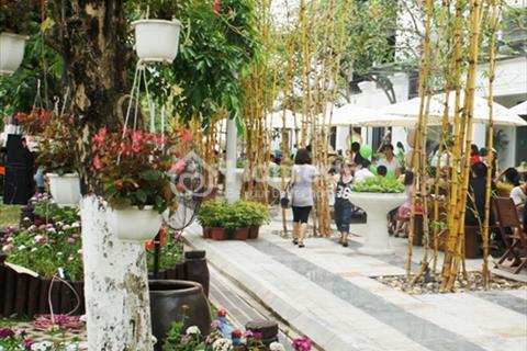 Khu nhà phố Phố Trúc  - Khu đô thị Ecopark