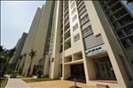 Với 11 tòa nhà cao từ 19 - 25 tầng, Rừng Cọ cung cấp gần 1.500 căn hộ cao cấp, đa dạng, từ các loại căn hộ tiêu chuẩn với 2 - 3 phòng ngủ (diện tích 71 – 92 m2) tới các căn hộ sang trọng, cao cấp như Skyvilla (diện tích 150 m2) và Penthouse (diện tích 160 m2 và 80 m2 vườn).