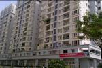 Từ mỗi căn hộ, các cư dân được tận hưởng trọn vẹn bầu không khí trong lành và tầm nhìn rộng mở.