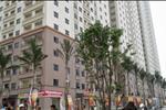 Các tòa chung cư đều được nghiên cứu thiết kế nhằm tối ưu không gian sống, tận dụng tốt nhất luồng gió, ánh sáng và không gian mát mẻ vào mùa hè.