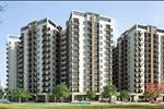 Các căn hộ của chung cư được thiết kế theo phong cách hiện đại, thân thiện. Mỗi căn hộ được thiết kế theo hai phong cách nội thất cổ điển và hiện đại, đem tới không gian sống tiện nghi cho cư dân.