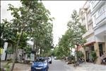 Khu nhà phố Hưng Gia được phát triển bởi Công ty TNHH Liên doanh Phú Mỹ Hưng. Dự án được chia thành 2 phân khu, bao gồm: Một phân khu có mặt tiền đường lớn và một phân khu có mặt tiền đường nhỏ. Nằm giữa mỗi khu có 2 công viên nội khu rộng.