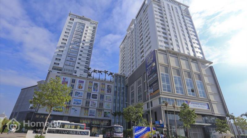 Dự án Khu phức hợp The Pegasus Plaza Đồng Nai - ảnh giới thiệu