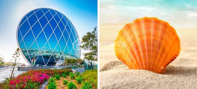 tòa nhà lấy cảm hứng từ thiên nhiên