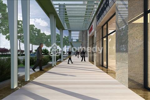 Khu căn hộ cao cấp Sarina Condominium - Khu đô thị Sala