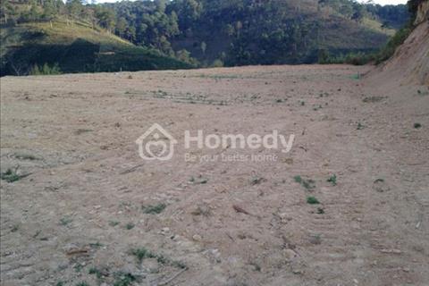 Bán gấp 254,99 ha đất tại Đa Nhim, Lâm Đồng