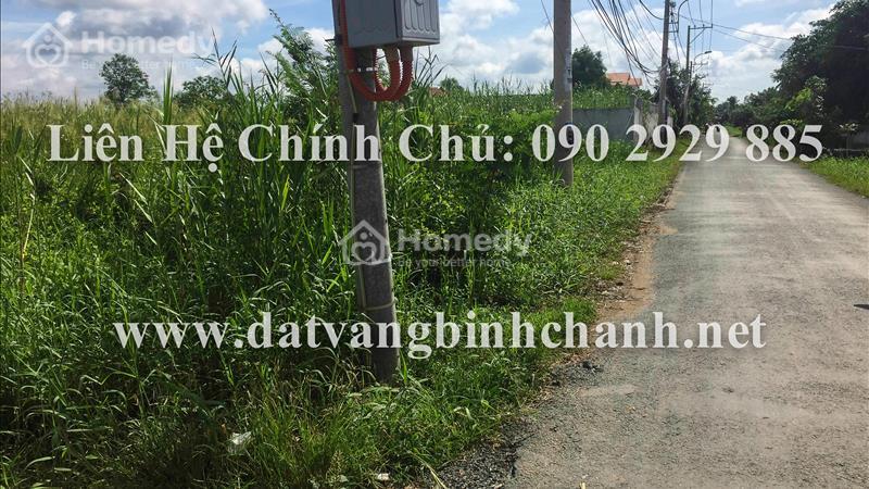 Cần bán gấp 1.200m2 đất mặt tiền đường Bà Cả, xã Đa Phước huyện Bình Chánh với gía cực rẻ - 2