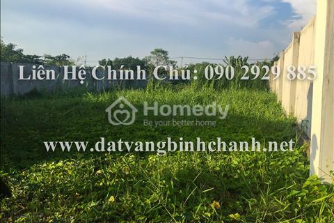 Bán gấp lô đất 505m2 mặt tiền Phong Phú, Bình Chánh, đất đẹp xây kho xưởng, nhà trọ, giá cực rẻ