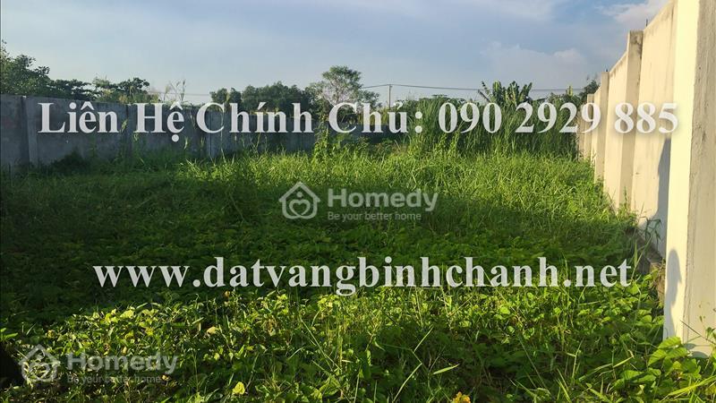Bán gấp lô đất 505m2 mặt tiền Phong Phú, Bình Chánh, đất đẹp xây kho xưởng, nhà trọ, giá cực rẻ - 1