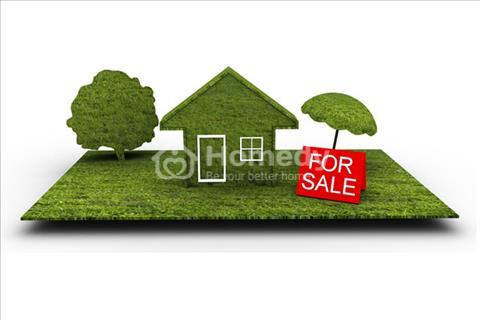 Đi nước ngoài, cần bán gấp 222m2 đất mặt tiền đường Bùi Văn Sự ,huyện Bình Chánh với gía cực rẻ