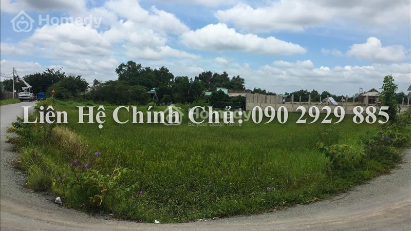 Cần bán gấp 2.000m2 đất hai mặt tiền đường Bùi Văn Sự, xã Quy Đức,huyện Bình Chánh với gía cực rẻ - 1