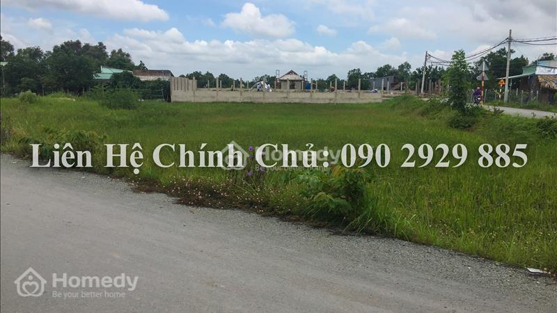 Cần bán gấp 2.000m2 đất hai mặt tiền đường Bùi Văn Sự, xã Quy Đức,huyện Bình Chánh với gía cực rẻ - 2