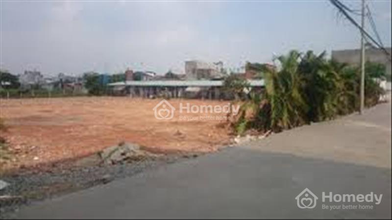 Bán 500 m2 đất thổ cư phường Mỹ Thới TP Long Xuyên - 1