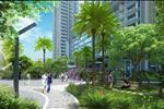 Điều đó sẽ làm cho không khí tại đây trong lành và thoáng đãng tạo nên không gian sống xanh cho các hộ dân cư