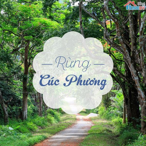 rung cuc phuong