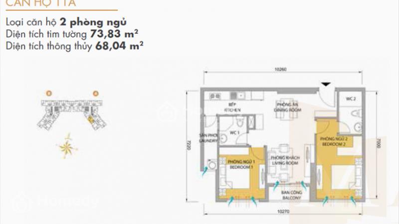 layout phong