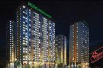 Hưng Ngân Garden bố trí 24 căn hộ thương mại ở khu vực tầng trệt, đáp ứng nhu cầu đầu tư kinh doanh dịch vụ và khu căn hộ chung cư từ tầng 2 tới tầng 22.