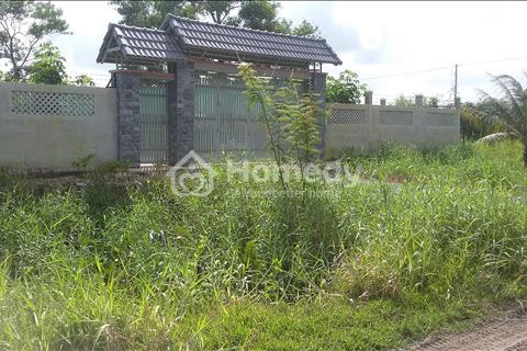 Đất xưởng, xã Phong Phú, huyện Bình Chánh, xây dựng ngay