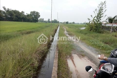 Bán 1,4 ha đất tại xã Tân Phú, huyện Đức Hoà, Long An