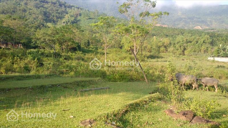 Bán 6.4 ha đất 50 năm có bìa đỏ tại xã Yên Bình huyện Thạch Thất Thành Phố Hà Nội - 2