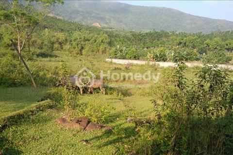 Bán 6.4 ha đất 50 năm có bìa đỏ tại xã Yên Bình huyện Thạch Thất Thành Phố Hà Nội