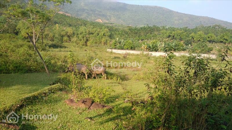 Bán 6.4 ha đất 50 năm có bìa đỏ tại xã Yên Bình huyện Thạch Thất Thành Phố Hà Nội - 1