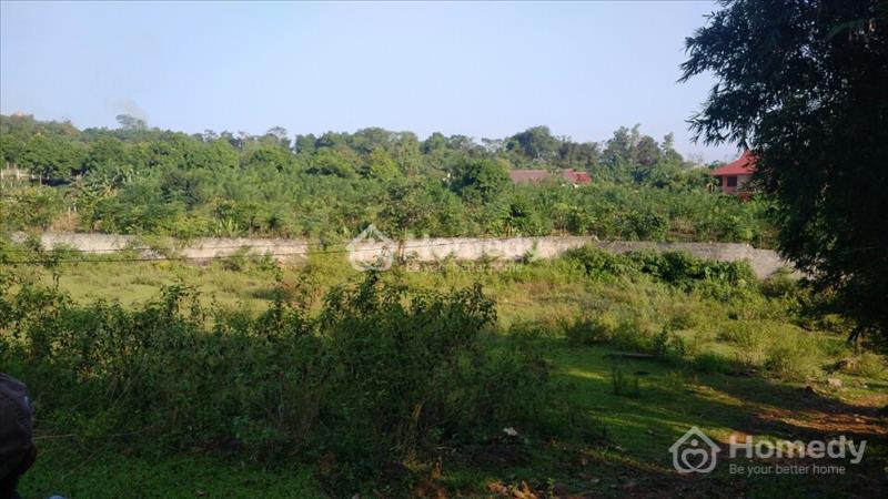 Bán 6.4 ha đất 50 năm có bìa đỏ tại xã Yên Bình huyện Thạch Thất Thành Phố Hà Nội - 3