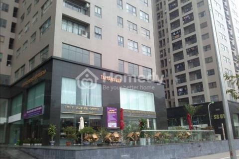 Cho thuê chung cư 102 Trường Chinh tòa HH1 căn 3 phòng ngủ đã có đồ giá 12 triệu