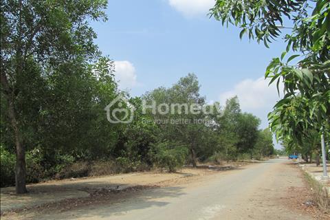 Hợp tác đầu tư hoặc cho thuê rẻ, dài hạn đất diện tích lớn, mặt tiền đường, Long Thới, Nhà Bè
