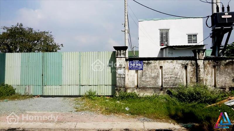 Bán đất Hóc Môn giá rẻ, diện tích 3800m2, SHR - 1