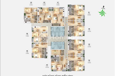 Chủ Đầu Tư chính thức ra bảng giá đợt 1, mặt bằng từng căn hộ Chung cư South Building Pháp Vân
