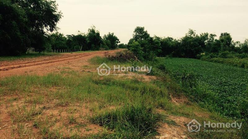 Bán đất đường Hồ Chí Minh, thuộc xã Tân Phú, huyện Đức Hoà, Long An - 5