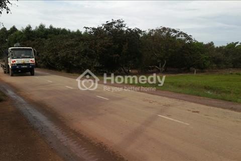 Bán đất cho công nhân, giá 2,7 triệu/m2 gần KCN Giang Điền