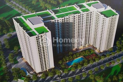 CT1 Khu đô thị Việt hưng, EcoHome Phúc lợi dự án xanh với đầy đủ tiện ích, giá chỉ 16,5 triệu/m2