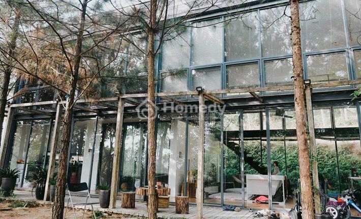 Thích thú với biệt thự nghỉ dưỡng dành riêng cho lễ giáng sinh ngay gần Hà Nội