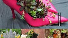 Hô biến vật dụng cũ trong nhà thành chậu hoa bắt mắt