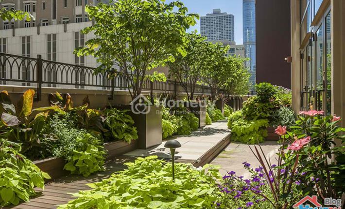 """Những khu """"vườn thượng uyển"""" trên sân thượng khiến ai cũng phải trầm trồ"""